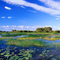 kakadu-national-park-australia-tourist