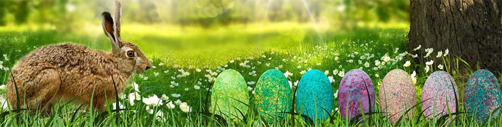 Easter Traditions of easter Bunny and easter eggs